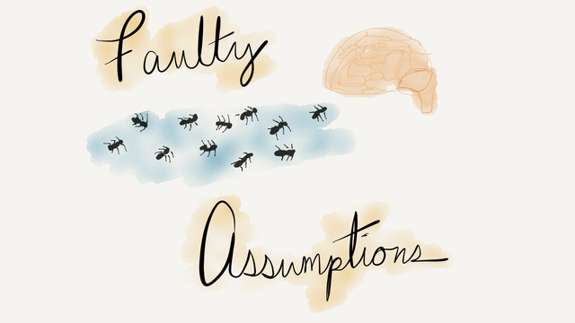 Faulty assumptions